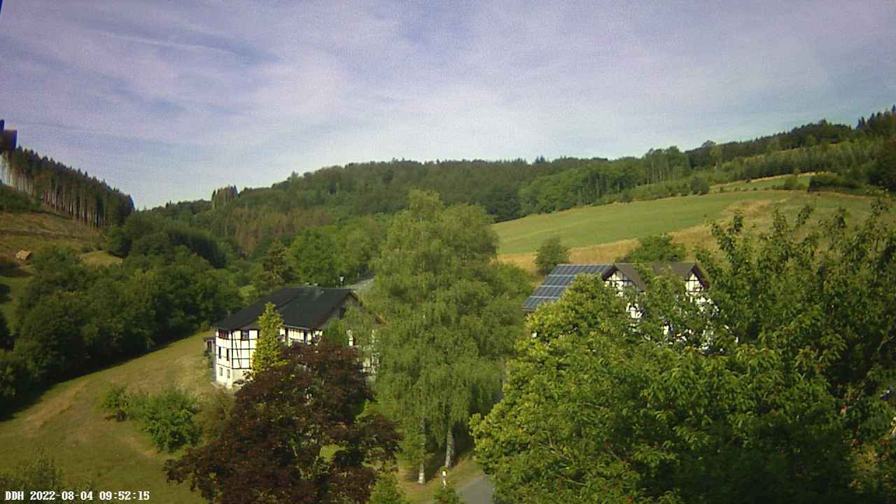 Webcam Diedenshausen